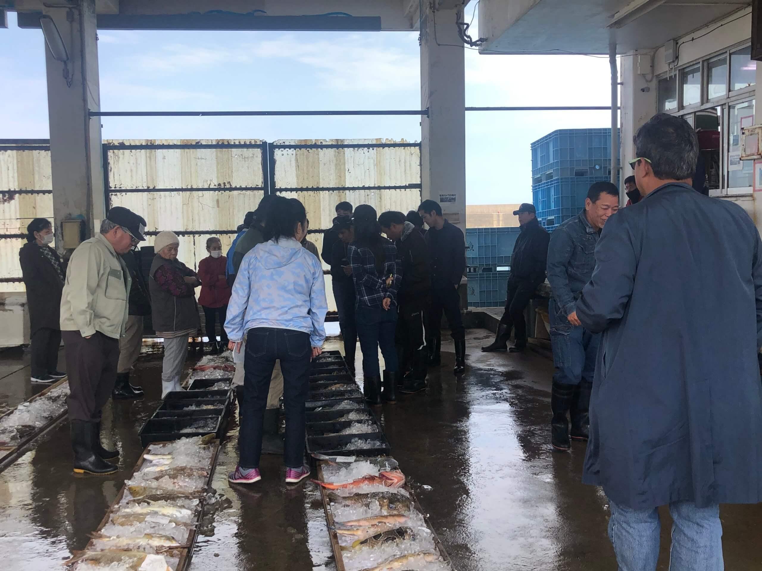 Experience of Fresh fish auction (Seri)